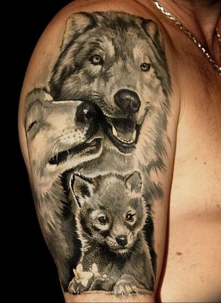 картинки тату волчица с волчатами использовался как символ