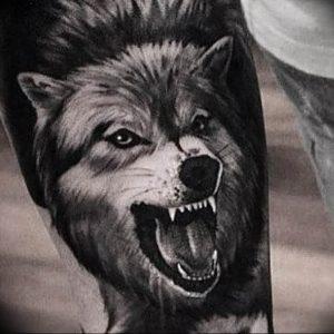 Фото тату волк 20.05.2019 №157 - photo tattoo wolf - tattoo-photo.ru