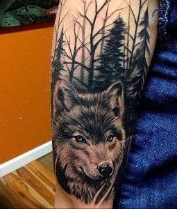 Фото тату волк 20.05.2019 №167 - photo tattoo wolf - tattoo-photo.ru