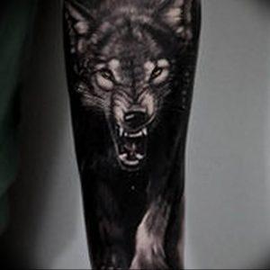Фото тату волк 20.05.2019 №170 - photo tattoo wolf - tattoo-photo.ru
