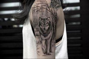 Фото тату волк 20.05.2019 №180 - photo tattoo wolf - tattoo-photo.ru