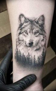 Фото тату волк 20.05.2019 №186 - photo tattoo wolf - tattoo-photo.ru
