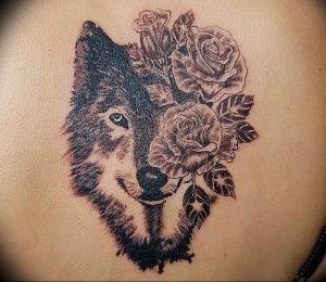 Фото тату волк 20.05.2019 №187 - photo tattoo wolf - tattoo-photo.ru