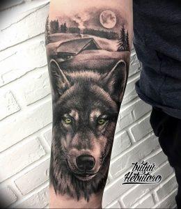 Фото тату волк 20.05.2019 №196 - photo tattoo wolf - tattoo-photo.ru