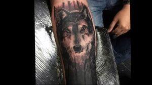 Фото тату волк 20.05.2019 №200 - photo tattoo wolf - tattoo-photo.ru