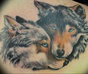 Фото тату волк 20.05.2019 №201 - photo tattoo wolf - tattoo-photo.ru