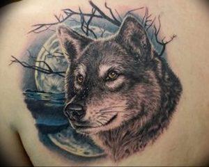 Фото тату волк 20.05.2019 №202 - photo tattoo wolf - tattoo-photo.ru