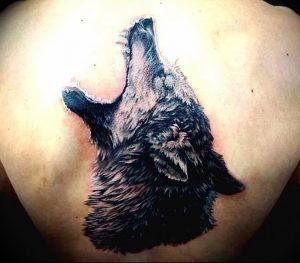 Фото тату волк 20.05.2019 №239 - photo tattoo wolf - tattoo-photo.ru