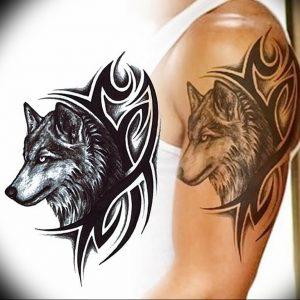 Фото тату волк 20.05.2019 №242 - photo tattoo wolf - tattoo-photo.ru
