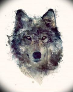 Фото тату волк 20.05.2019 №288 - photo tattoo wolf - tattoo-photo.ru