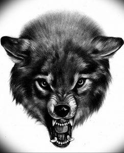 Фото тату волк 20.05.2019 №295 - photo tattoo wolf - tattoo-photo.ru