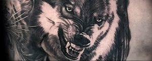 Фото тату волк 20.05.2019 №297 - photo tattoo wolf - tattoo-photo.ru