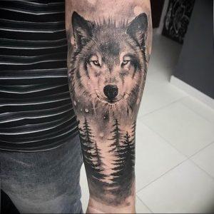Фото тату волк 20.05.2019 №298 - photo tattoo wolf - tattoo-photo.ru