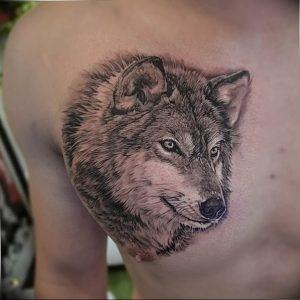 Фото тату волк 20.05.2019 №303 - photo tattoo wolf - tattoo-photo.ru