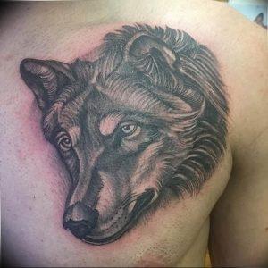Фото тату волк 20.05.2019 №308 - photo tattoo wolf - tattoo-photo.ru