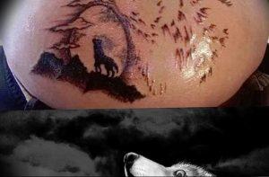 Фото тату волк 20.05.2019 №338 - photo tattoo wolf - tattoo-photo.ru