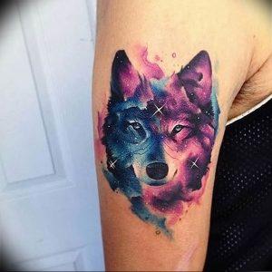 Фото тату волк 20.05.2019 №344 - photo tattoo wolf - tattoo-photo.ru