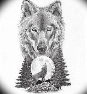 Фото тату волк 20.05.2019 №381 - photo tattoo wolf - tattoo-photo.ru