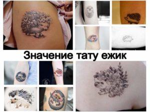 Значение тату ежик - информация про варианты и особенности рисунка - фото коллекция готовых рисунков татуировки
