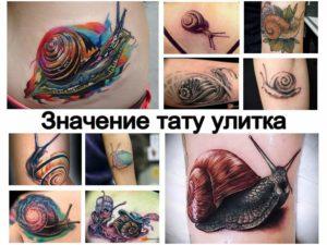 Значение тату улитка - варианты рисунка и фото примеры готовых татуировок