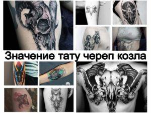Значение тату череп козла - информация про особенности рисунка татуировки и фото примеры готовых татуировок на теле