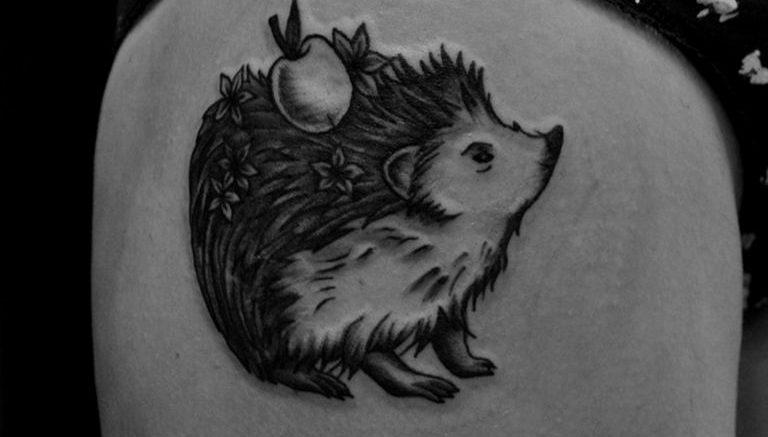 Фото вариант тату ежик 31.07.2019 №001 - tattoo hedgehog - tattoo-photo.ru