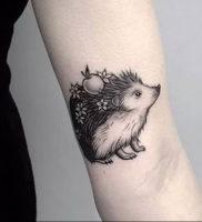 Фото вариант тату ежик 31.07.2019 №003 — tattoo hedgehog — tattoo-photo.ru