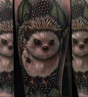 Фото вариант тату ежик 31.07.2019 №014 — tattoo hedgehog — tattoo-photo.ru