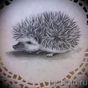 Фото вариант тату ежик 31.07.2019 №016 - tattoo hedgehog - tattoo-photo.ru