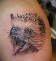 Фото вариант тату ежик 31.07.2019 №027 — tattoo hedgehog — tattoo-photo.ru