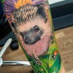 Фото вариант тату ежик 31.07.2019 №068 - tattoo hedgehog - tattoo-photo.ru
