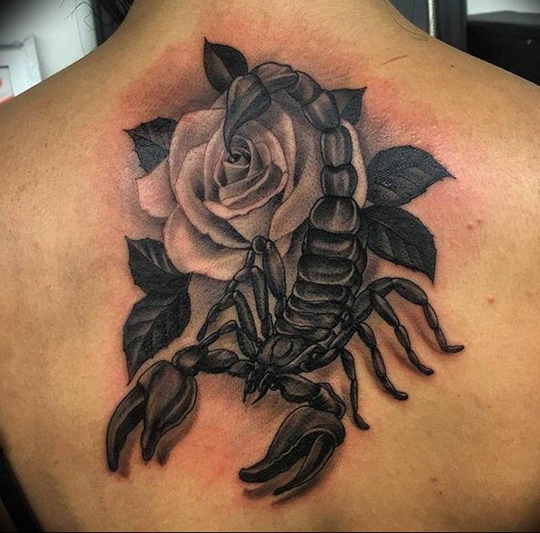 картинки тату скорпиона и цветка итоге уже через