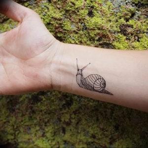 Фото тату улитка 28.07.2019 №084 - snail tattoo - tattoo-photo.ru