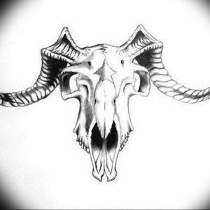 Фото тату череп козла 28.07.2019 №071 - goat skull tattoo - tattoo-photo.ru