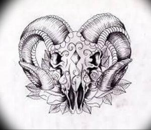 Фото тату череп козла 28.07.2019 №074 - goat skull tattoo - tattoo-photo.ru