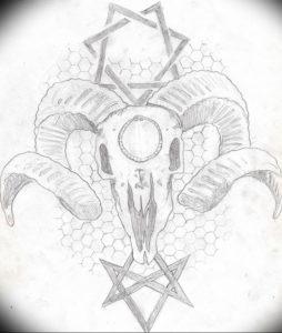 Фото тату череп козла 28.07.2019 №085 - goat skull tattoo - tattoo-photo.ru