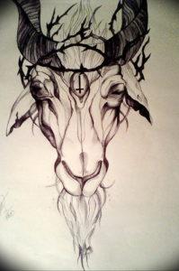 Фото тату череп козла 28.07.2019 №087 - goat skull tattoo - tattoo-photo.ru