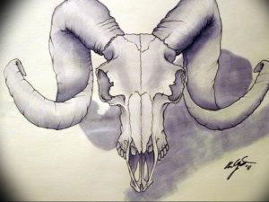 Фото тату череп козла 28.07.2019 №114 - goat skull tattoo - tattoo-photo.ru