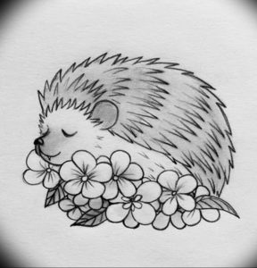 Photo ежик тату эскиз 31.07.2019 №004 - hedgehog tattoo sketch - tattoo-photo.ru