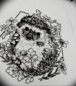 Photo ежик тату эскиз 31.07.2019 №006 - hedgehog tattoo sketch - tattoo-photo.ru