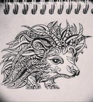 Photo ежик тату эскиз 31.07.2019 №009 — hedgehog tattoo sketch — tattoo-photo.ru
