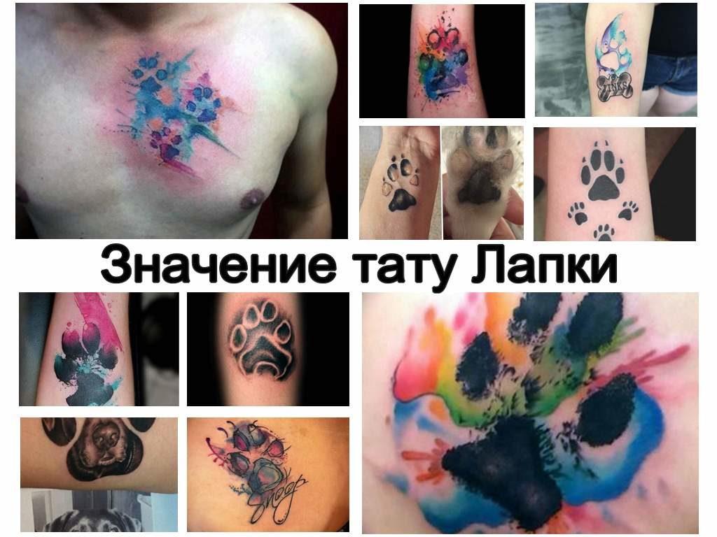 Значение тату Лапки - информация про особенности рисунка татуировки и коллекция фото примеров готовых татуировок