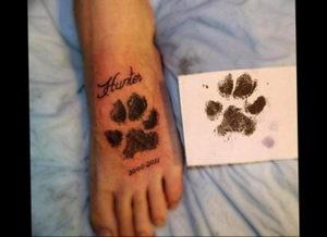 Фото тату лапка собаки 12.08.2019 №062 - dog paw tattoo - tattoo-photo.ru