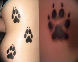 Фото тату лапки на животе 12.08.2019 №009 - paw tattoo on the stomach - tattoo-photo.ru