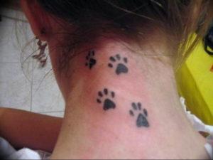 Фото тату лапки на шее 12.08.2019 №010 - paw tattoo on the neck - tattoo-photo.ru