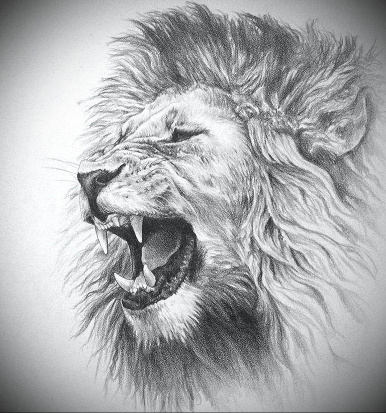 тату голова льва картинки здания, выстроенные