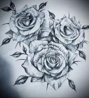 Фото роза тату эскиз 13.09.2019 №012 — rose tattoo sketch — tattoo-photo.ru