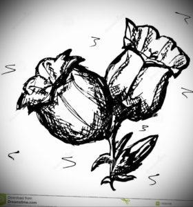 Фото эскизы тату цветы 13.09.2019 №007 - flower sketch designs - tattoo-photo.ru