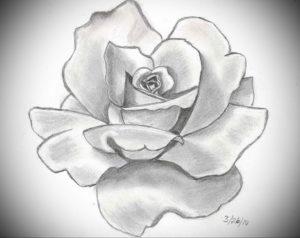 Фото эскизы тату цветы 13.09.2019 №008 - flower sketch designs - tattoo-photo.ru