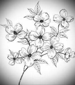 Фото эскизы тату цветы 13.09.2019 №011 - flower sketch designs - tattoo-photo.ru